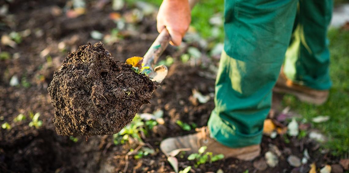 Garten-und-Landschaftsbau